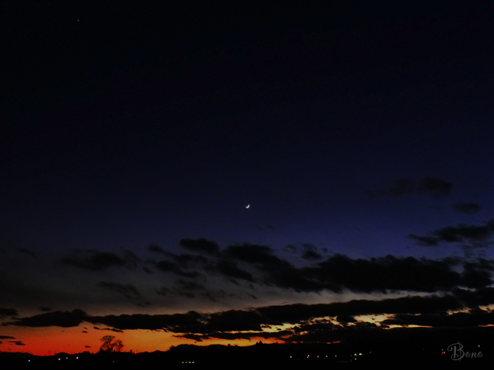 c-moon-6d.jpg
